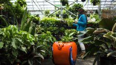 Piaggio Gita: un aiutante per la spesa