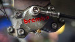 pinza posteriore Brembo