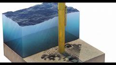 Pneumatici Fuori Uso: un tesoro sottomarino - Immagine: 5