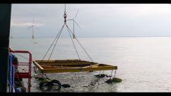 Pneumatici Fuori Uso: un tesoro sottomarino - Immagine: 4