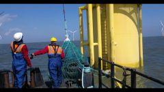 Pneumatici Fuori Uso: un tesoro sottomarino - Immagine: 3
