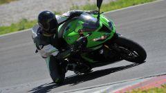 Honda CBR 600 RR vs Kawasaki Ninja ZX-6R 636 - Immagine: 6