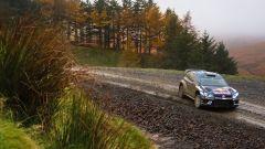 Polo R WRC - Rally del Galles