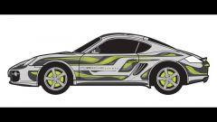 Porsche Cayman Art Car - Immagine: 25