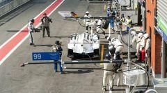 Con Porsche Macan alla 6 Ore di Spa - Immagine: 77