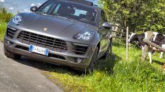 Con Porsche Macan alla 6 Ore di Spa - Immagine: 23