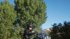 La gamma Harley-Davidson 2013 - Immagine: 21