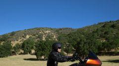 La gamma Harley-Davidson 2013 - Immagine: 19
