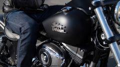 La gamma Harley-Davidson 2013 - Immagine: 13