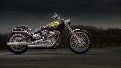 La gamma Harley-Davidson 2013 - Immagine: 14