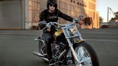 La gamma Harley-Davidson 2013 - Immagine: 17