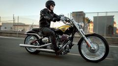 La gamma Harley-Davidson 2013 - Immagine: 2