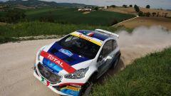 Rally Adriatico 2016 - Info e Risultati - Immagine: 5
