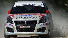 Rally Adriatico: le pagelle  - Immagine: 3