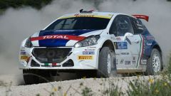 Rally Adriatico: Scandola domina anche in gara 2