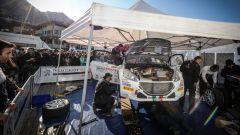 Rally del Ciocco e Valle del Serchio 2016: le pagelle - Immagine: 4