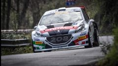 Rally Il Ciocco: Peugeot Sport continua a vincere nel CIR - Immagine: 1