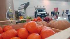 Renault Business Booster Tour: Kangoo, Trafic e Master arrivano con l' X-Track - Immagine: 8