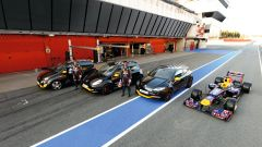 Renault Mégane RS Red Bull Racing RB7 - Immagine: 4