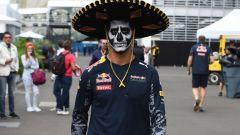 Ricciardo ci sarà nelle ultime due gare di Formula Uno con Red Bull