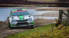 Rovampera detta legge nel WRC2