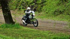 Royal Enfield Himalayan: il fuoristrada leggero sembra essere il suo habitat