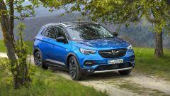 Le novità Opel raccontate da Paola Trotta, Direttore Comunicazione Opel Italia - Immagine: 5