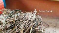 Samsung Galaxy S9 a confronto con i Samsung Note 8 e Note 4 - Immagine: 34
