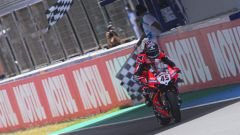 SBK 2020, Round Spagna, Jerez: Scott Redding (Ducati)
