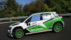 Scandola e D'amore a bordo della Skoda - Rally Friuli Venezia Giulia