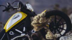 Scrambler Ducati - Immagine: 63