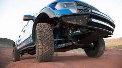 Shelby Raptor Baja700 - Immagine: 5