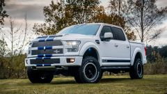 Shelby F-150 Off-Road Truck