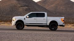 Shelby F-150 Off-road, vista laterale