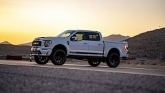 Shelby F-150 Off-road