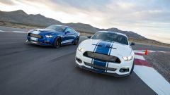 Shelby Super Snake: bianco o blu. Come la preferite?