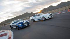 Shelby Super Snake: la base naturalmente è la Ford Mustang