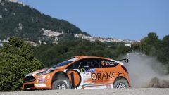Simone Campedelli - Ford Fiesta Orange