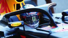 Sistema HALO sulla Red Bull F1