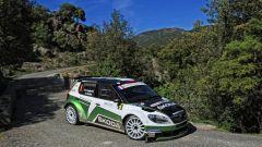 Skoda Citigo rally - Immagine: 6