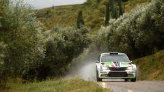 Skoda Motorsport Italia - Scandola