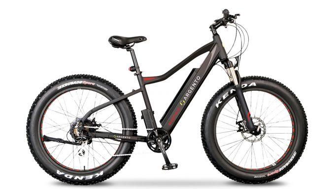Speciale e-bike: Argento Elephant