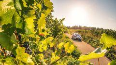 SportItalia TV apre le porte al grande rally con il format 'SI Motori-Speciale WRC' - Immagine: 3