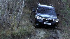 Subaru Forester 2013 - Immagine: 8