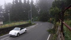 Panoramica Zegna - Immagine: 5
