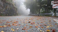 Panoramica Zegna - Immagine: 2