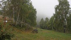 Panoramica Zegna - Immagine: 22