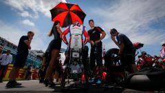 Superbike 2016: le pagelle di Misano - Immagine: 34