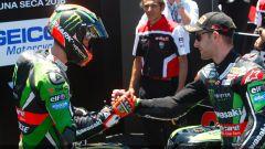 Superbike Laguna Seca 2016: dominio Kawasaki, Tom Sykes in pole, Jonathan Rea vince gara 1 - Immagine: 10