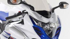 Suzuki GSX-R 1000 SE - Immagine: 2